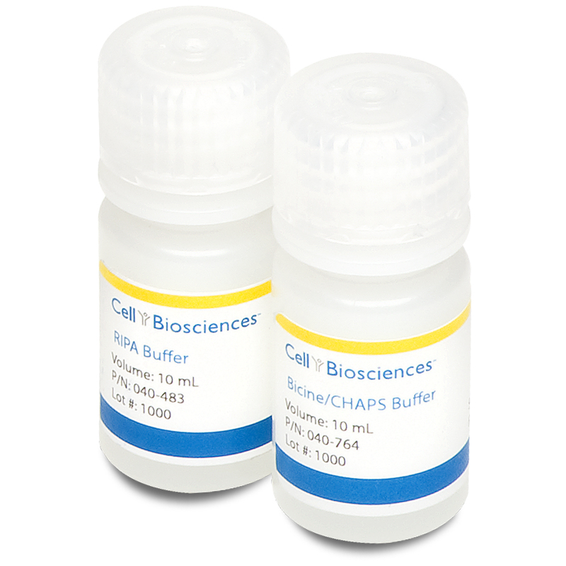 ProteinSimple Bicine/CHAPS Lysis Buffer and Sample Diluent for Simple Western